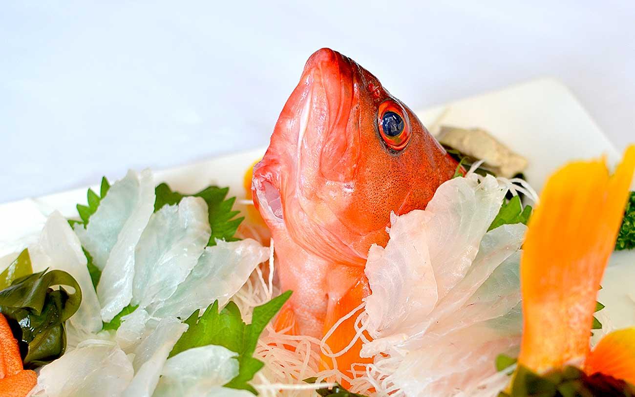 魚のはなし